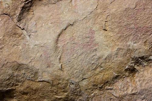 Рисунки из каменного века