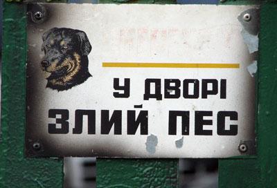 29.01 КБ