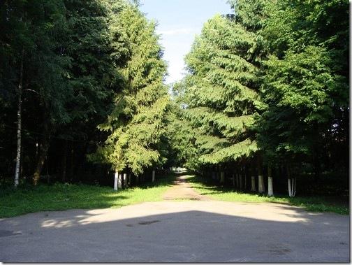Полонне, парк