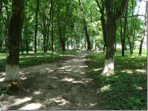 Нова Чортория, парк