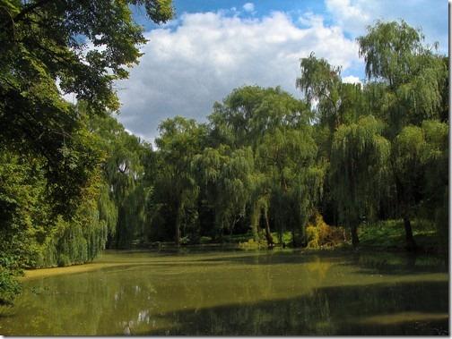 Маліївці, парк
