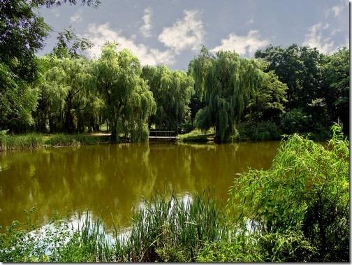 Андрушівка, парк