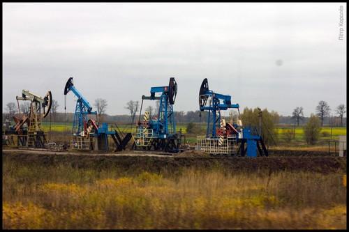 Нефть в Калининграде