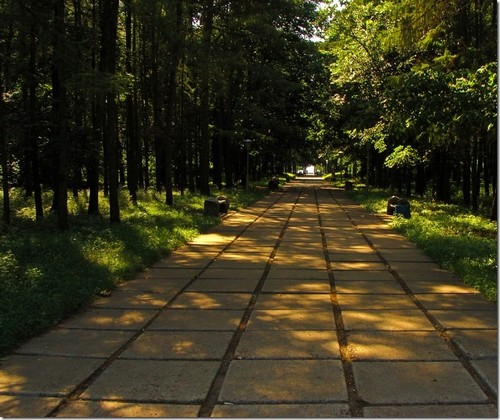 Яготин, парк