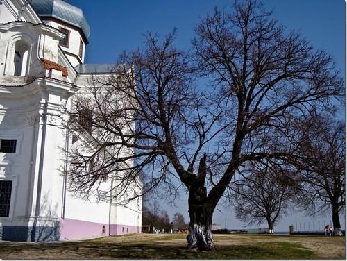 Старий Чарторийськ