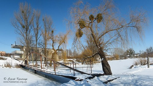 у парку Бобринських